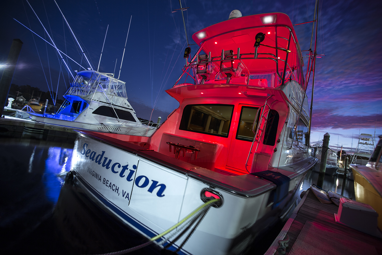 seaduction charters night cruise