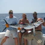deep sea fishing marlin VB